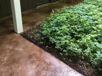 Newly Restored Hard Surface Cleaning & Restoration - Decorative Concrete